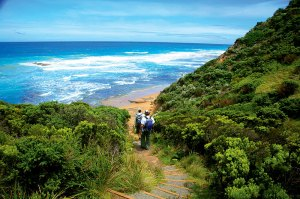 great-ocean-walk-the-track-heads-down-to-wreck-beach