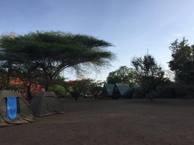 Snake Park Campsite